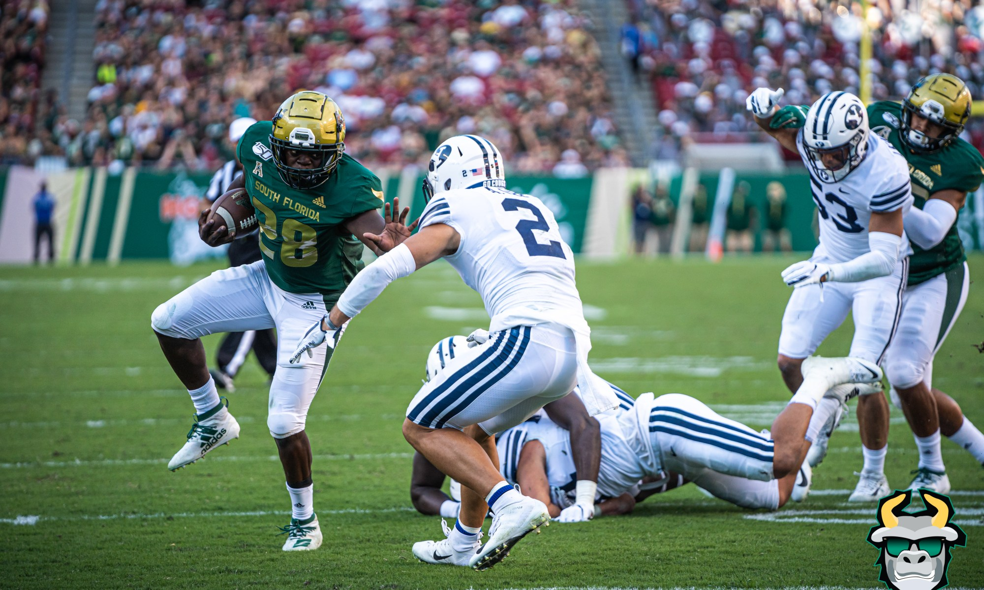 USF RB Sands