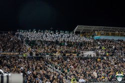 67 - USF vs. UCF 2019 - USF Thundering Herd In stands at Spectrum Stadium by David Gold - DRG06317