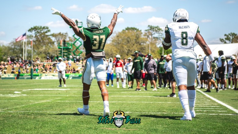 📌 SoFloBulls.com #BullSpring2018 USF Spring Football Game 2018 Photos by Dennis Akers