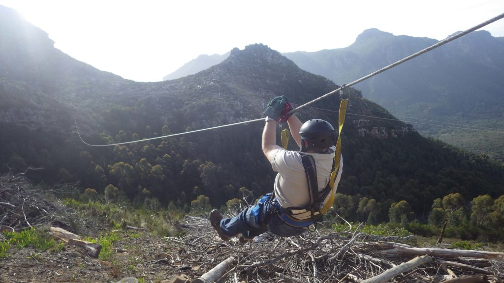 ziplining in cape town fun things to do