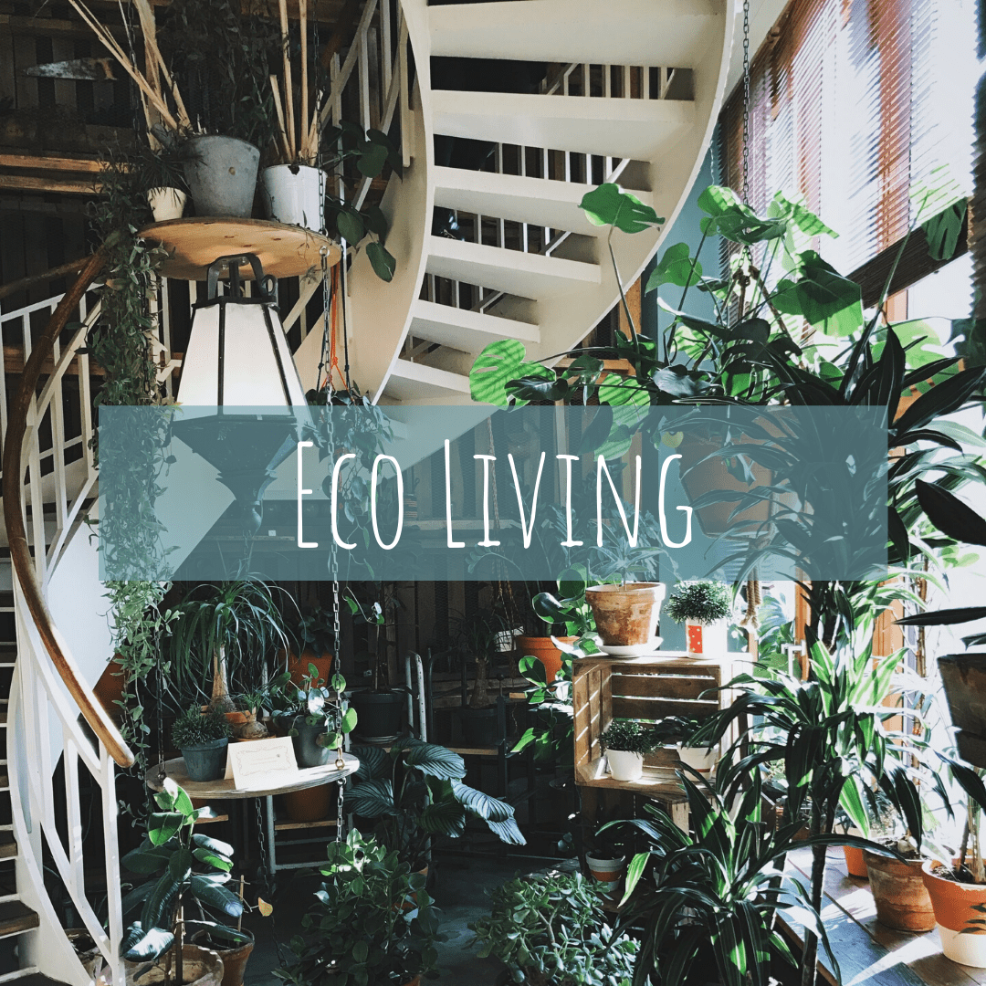 information on eco living