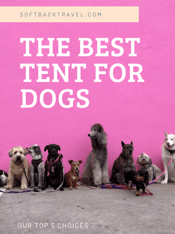 best tent for dogs