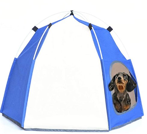 tent for small dogs