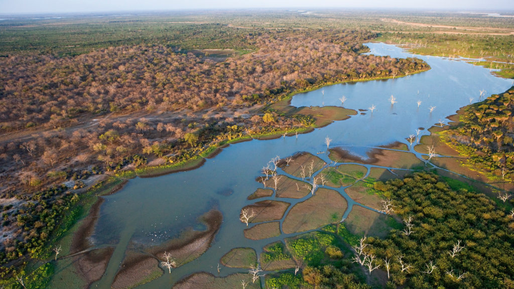 One of the best places to travel in africa to see wildlife - Okavango Delta