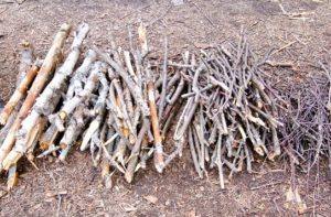 kindling for a fire pit