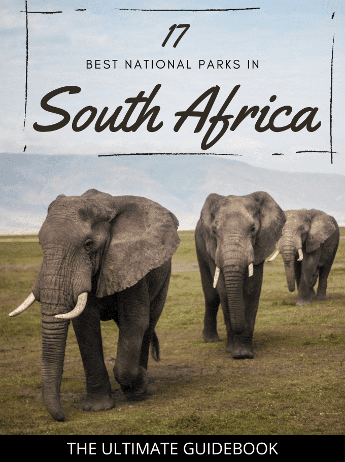 Top 17 National Parks in South Africa (The Ultimate Guidebook)