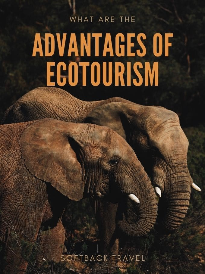 Advantages of Ecotourism - Softback Travel