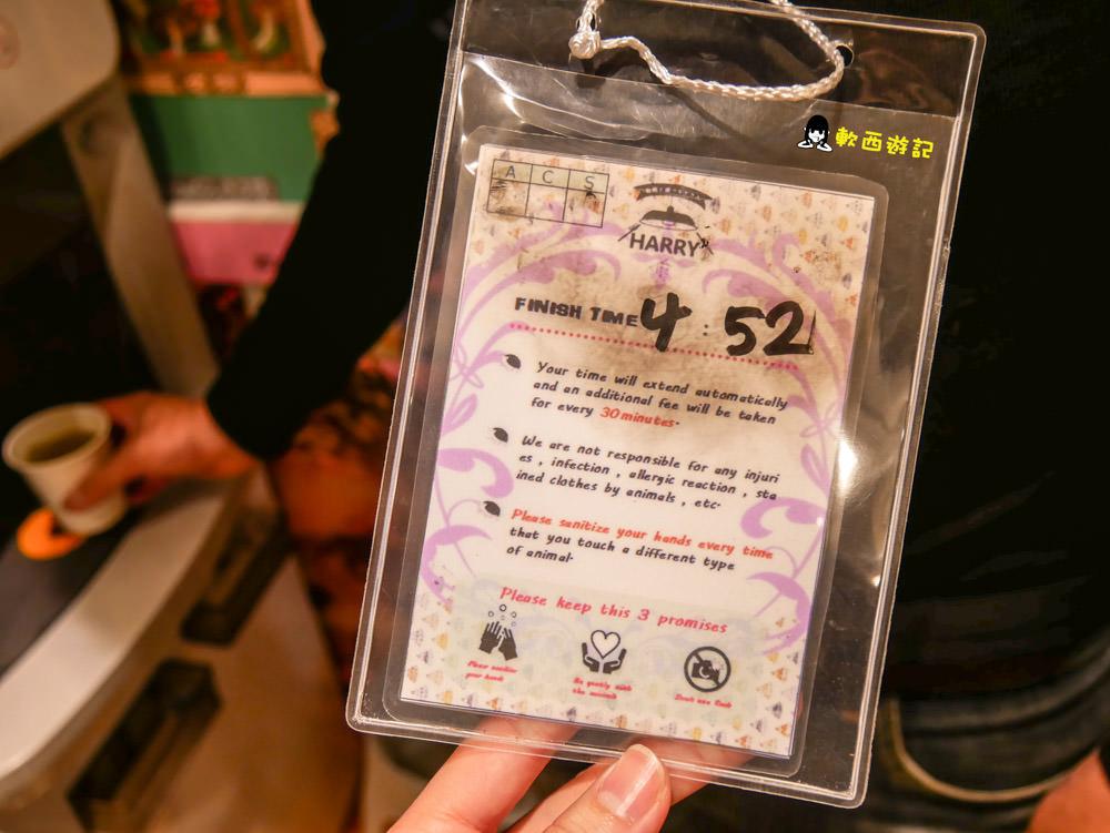 日本東京景點推薦》Harry寵物咖啡廳●療癒刺蝟倉鼠咖啡廳 跟龍貓/狐蒙/草原犬鼠一起玩! 東京六本木寵物咖啡廳 東京景點/東京咖啡廳