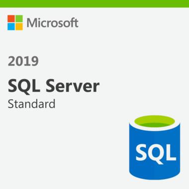 Microsoft SQL Server 2019 Standard Edition for Windows   1PC- License