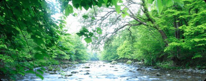 ウォーターサーバーの水の種類【天然水とRO水】