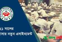 Madrasah Class 6 to 9 First Assignment & Short Syllabus 2021 PDF