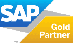 SAP Business One Gold Partner of the Year