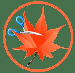 Easy Cut Studio 5.011 Crack + Key Full Latest Version 2021 Free Download