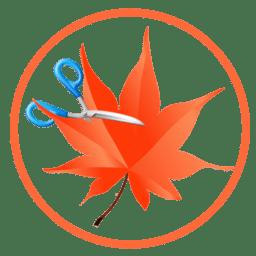 EEasy Cut Studio 5.011 Crack + Key Full Latest Version 2021 Free Download