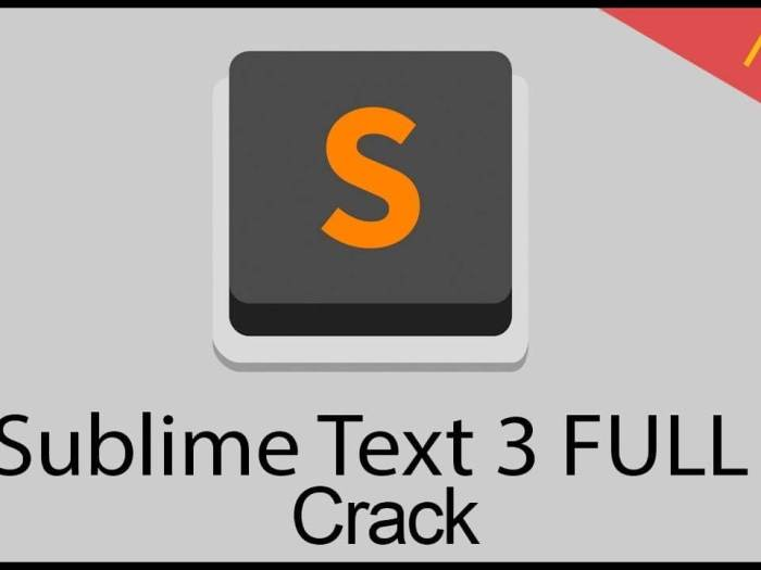 Sublime Text 3.2.2 Build 3211 Crack 2021 Free Download