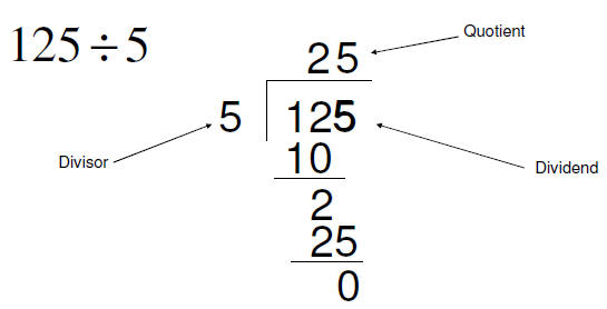 Polynomial division, the remainder theorem, and the factor