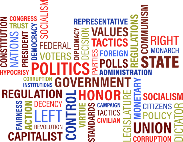 Political Ideologues and Ideologies