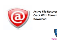 Active File Recovery Pro Crack With Torrent Free Download