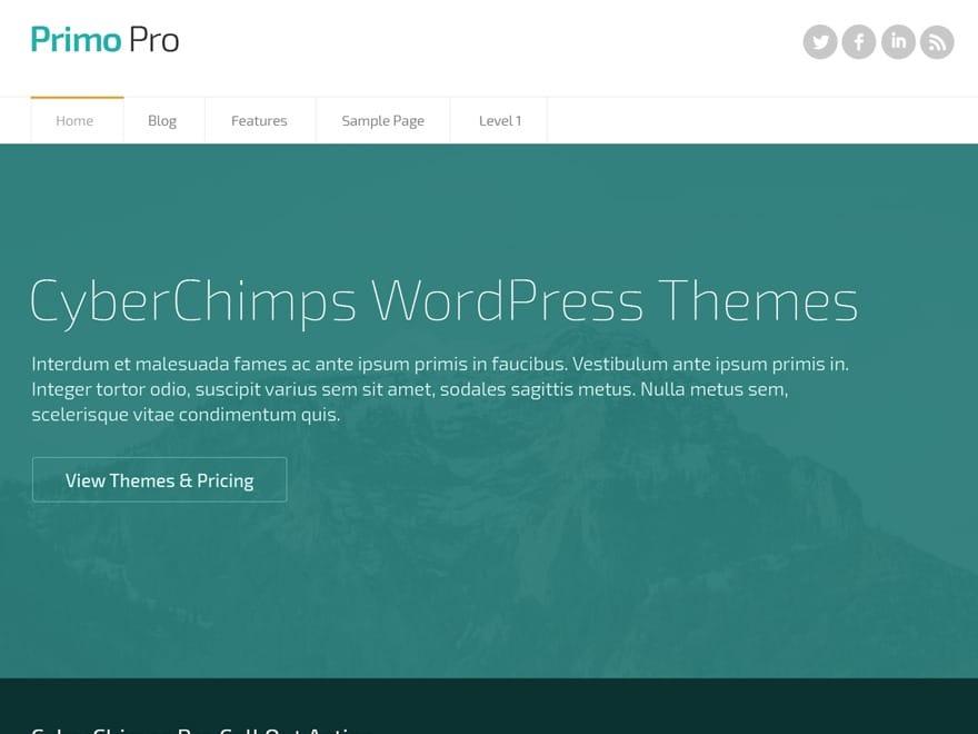 CyberChimps Primo Pro 2
