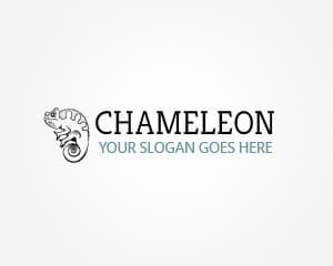 Elegant Themes Chameleon