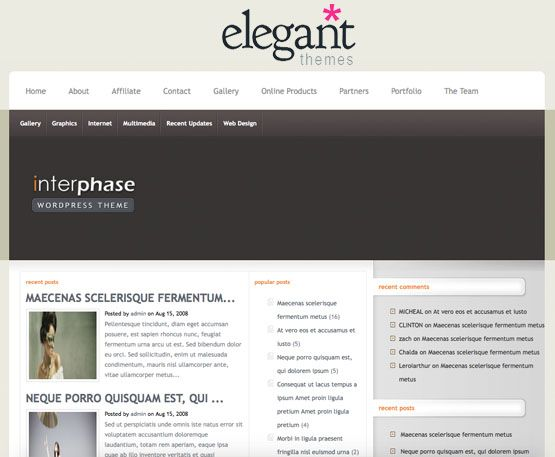 Elegant Themes InterPhase