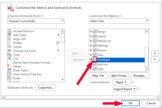 Check the Developer checkbox in the Customize the Ribbon section