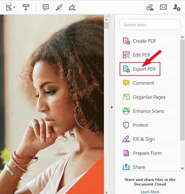 Click Export PDF