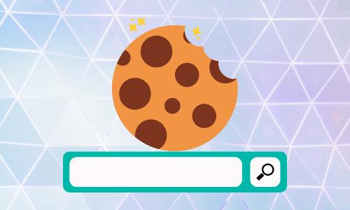VPN protect your cookies