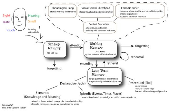 our human memory architecture