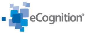 Ecognition