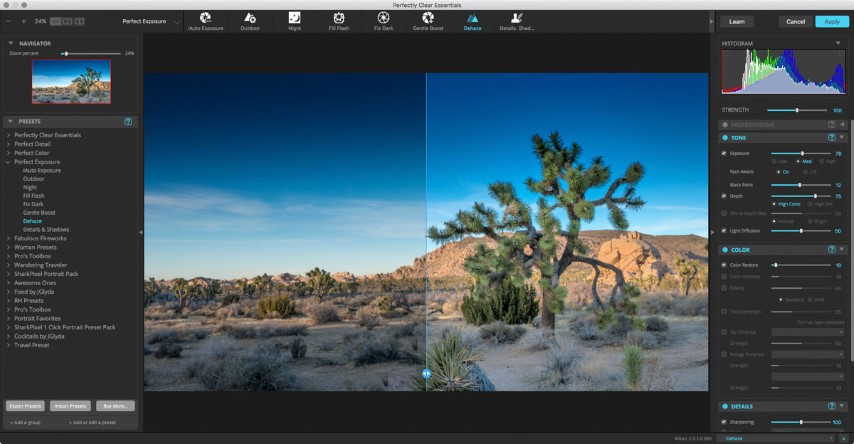 Perfectly Clear Essentials 3.6.3 macOS Torrent