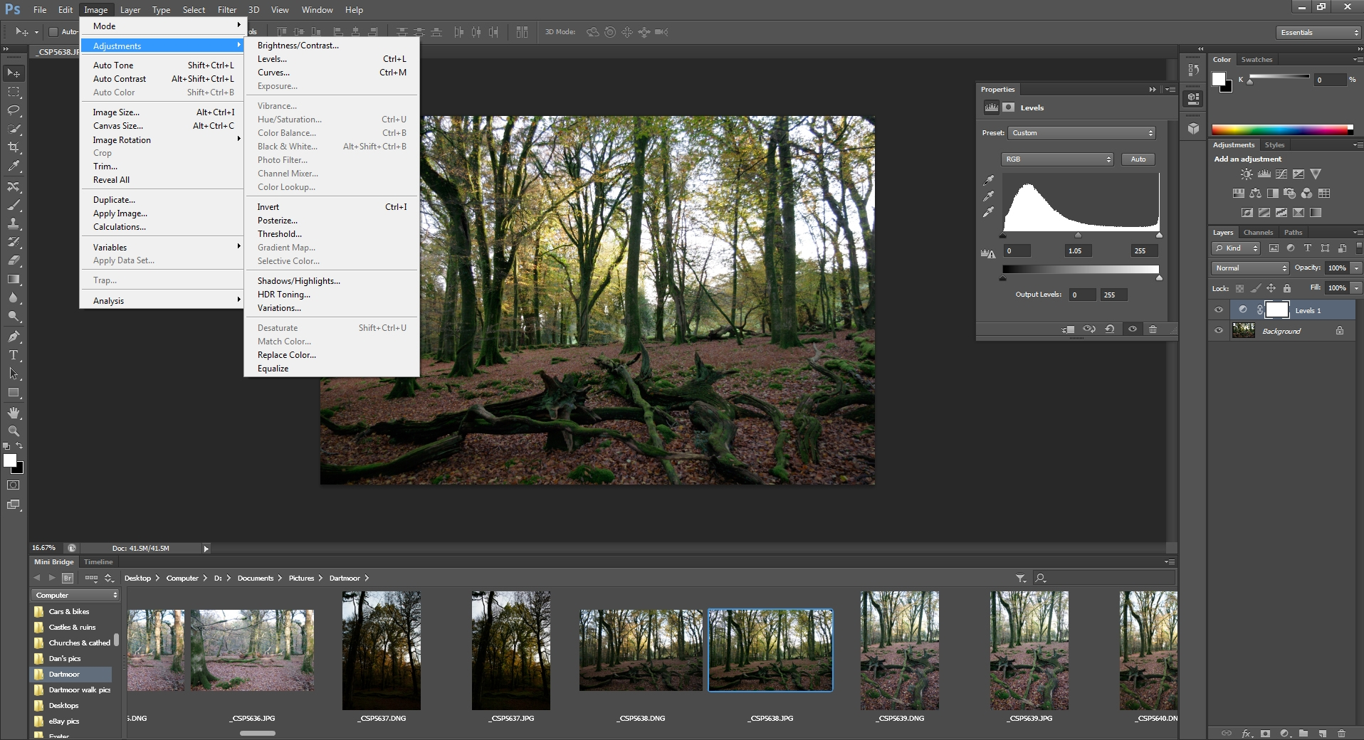 adobe photoshop cs6 extended forest editing work