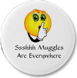 Shhh! Muggles Are Everywhere