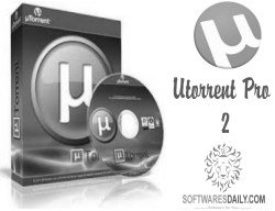 uTorrent PRO 3.7 License Crack & Patch Latest Free Download