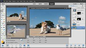 Adobe Photoshop Elements 14 Crack + Serial Key