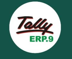 Tally ERP 9 Crack Release 6.5.2 Serial Key Free Download