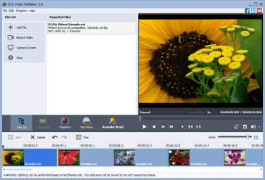 AVS Video ReMaker Full version