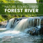 Nature Sound Series - Forest River CD