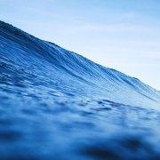 Aufgeben oder weitermachen |So geht Freiheit |Jan Stiewe