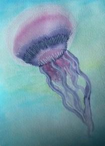 Aquarelle-meduse-Tipivoine-Zengia