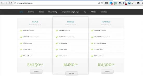 pakej asas hosting