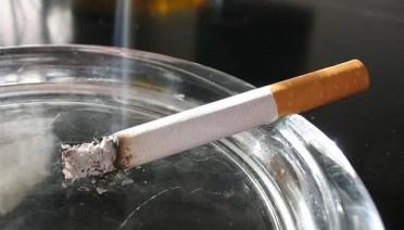 nikotin dalam rokok