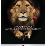 nucynta opiate poster