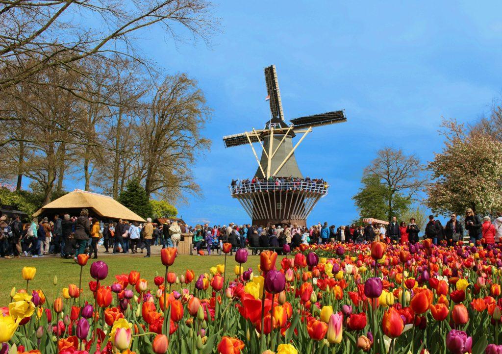 Keukenhof, le plus grand parc floral au monde
