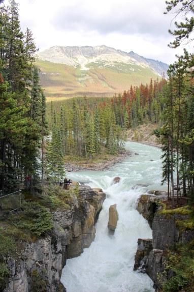Sunwapta Falls Soif de Voyages