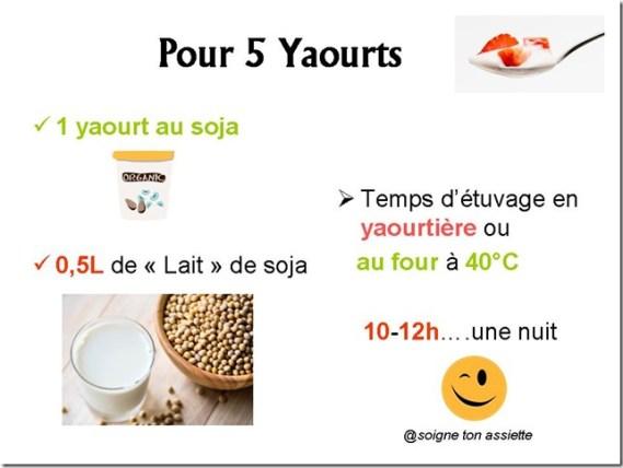 comment faire des yaourts au soja