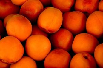 tartes aux abricots sans crème