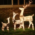 Decorate your home with outdoor holiday decor from big lots