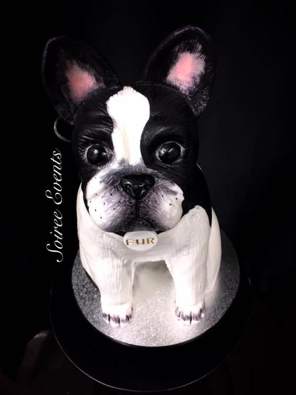 3d french bull dog cake