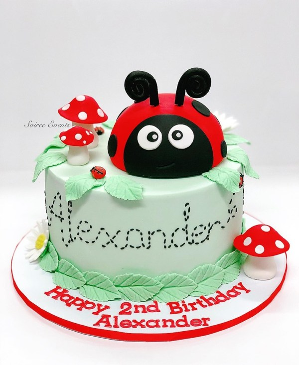 lady bug cake boy